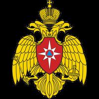 cat-logo-mchs.png